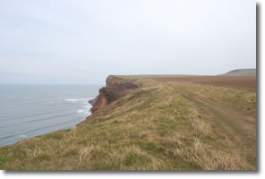gently undulating cliff tops