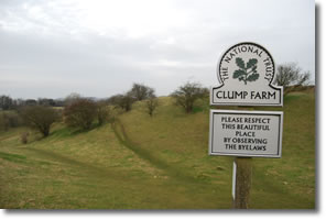 Looking back into Clump Farm